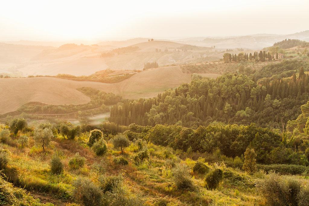 castelfalfi-tuscany-wedding-photographer-roberta-facchini-351