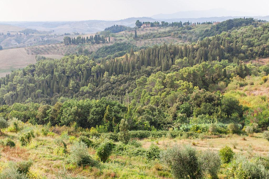 castelfalfi-tuscany-wedding-photographer-roberta-facchini