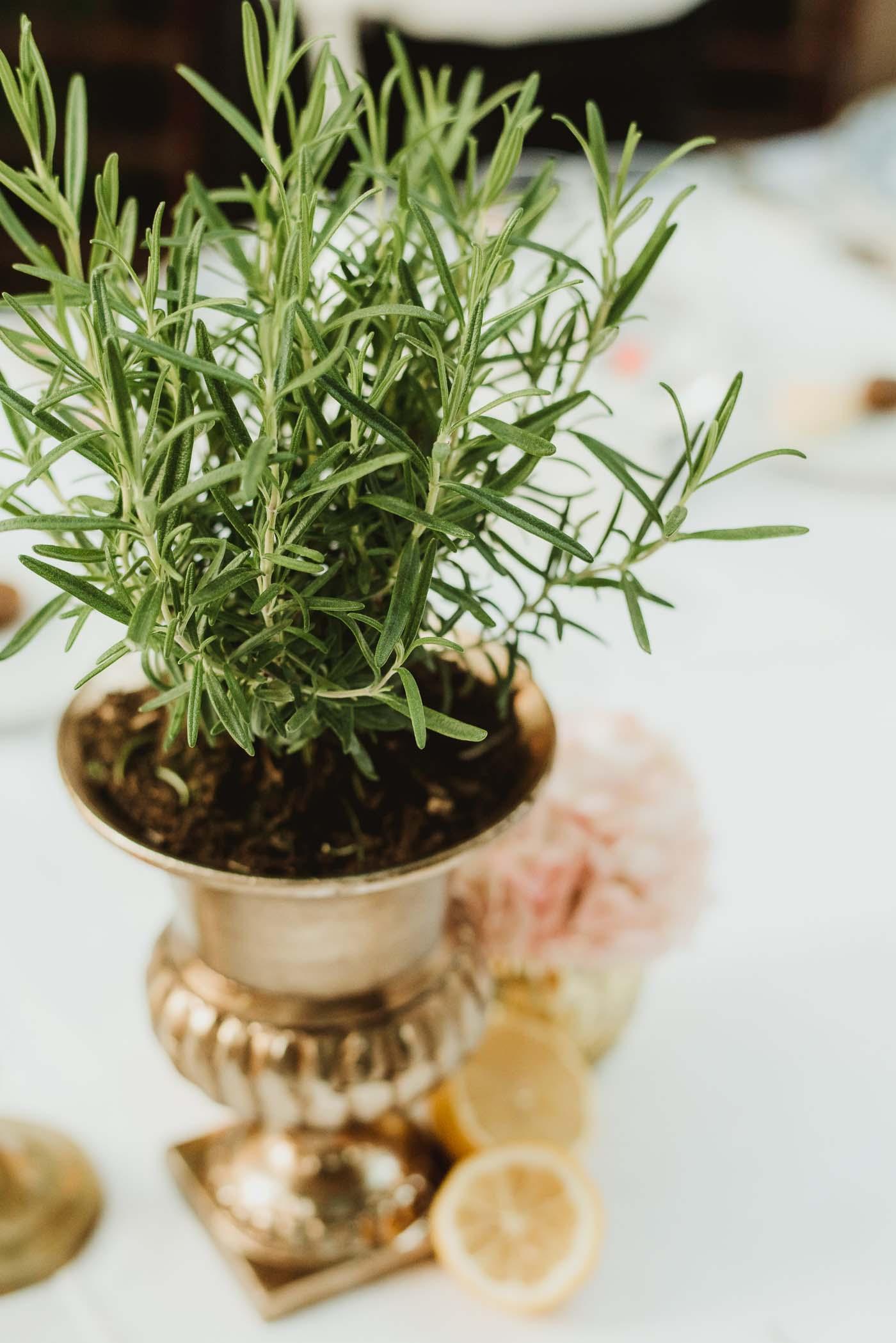 Relaxed-wedding-borgo-stomennano-1181