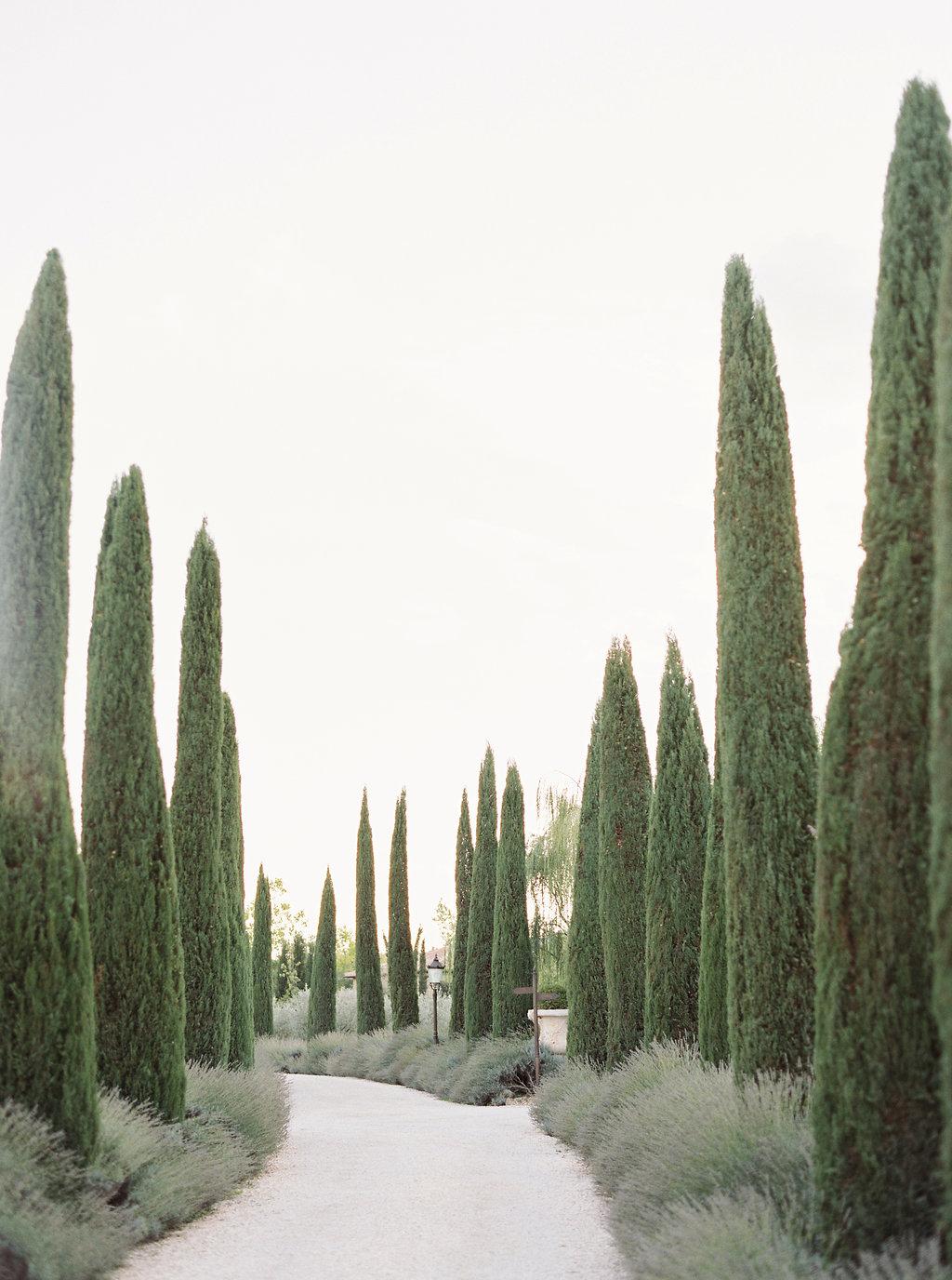 Castello-di-bibbione84
